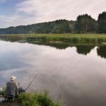 Клев рыбы в Ленинске, Елани, Даниловке и Камышине Волгоградской области
