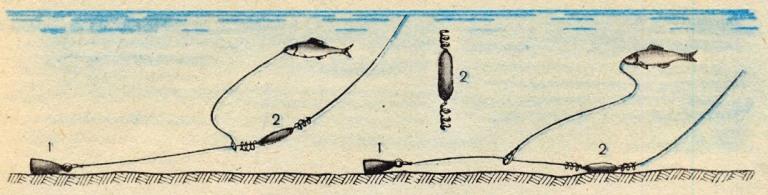 Ловля на живца с берега оснастка