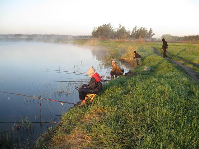 Рыбалка в чеховском районе платная