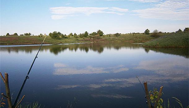 Платная рыбалка в Воронежской области