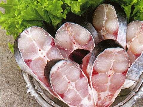 Рыба пангасиус что за рыба