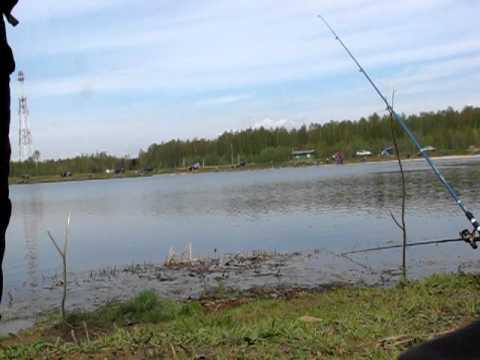 Платная рыбалка раково