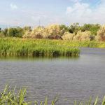 Места для рыбалки в Алматинской области