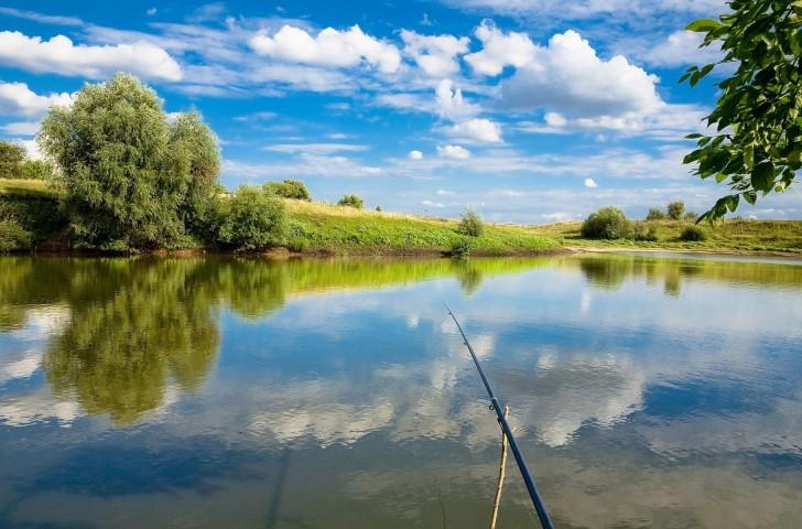 Рыбалка в красногорске платная
