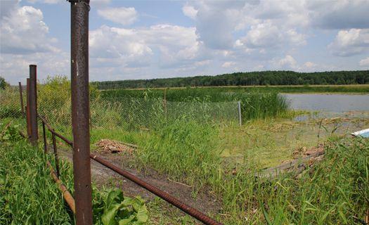 Пруд в Воронежской области