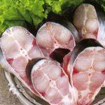 Что за рыба пангасиус и где она обитает?