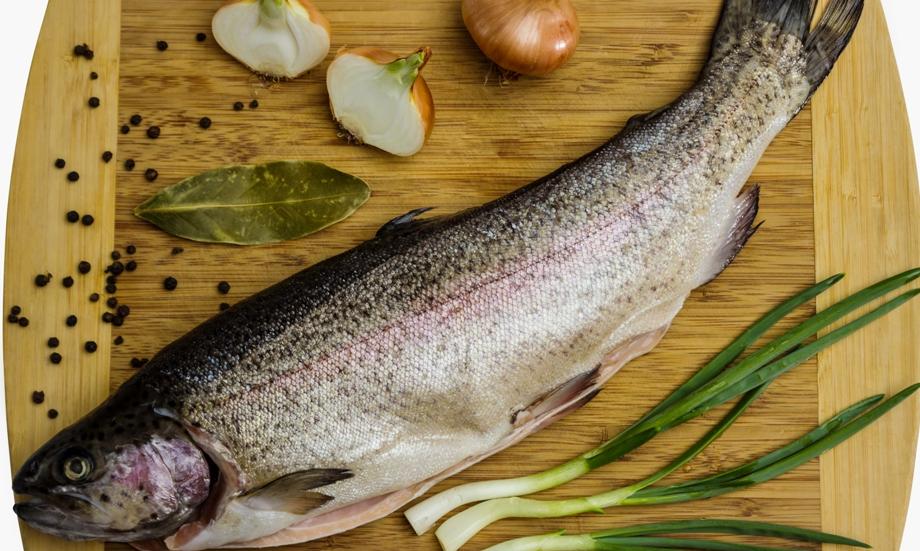 Что за рыба чавыча