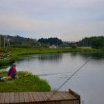 Платная и бесплатная рыбалка в Раменском районе Московской области