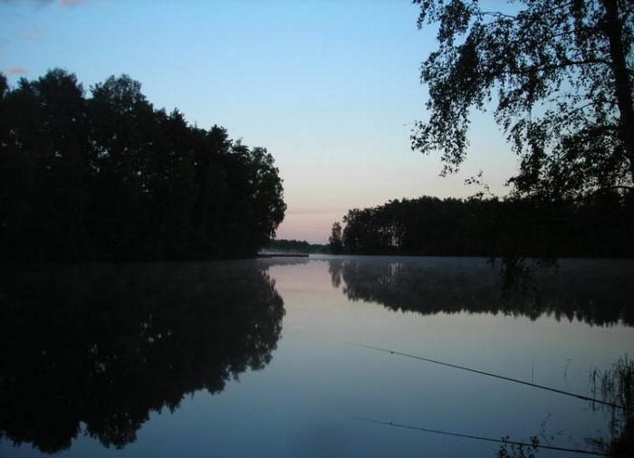 Рыбалка в ногинском районе