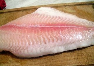 Что за рыба морской язык