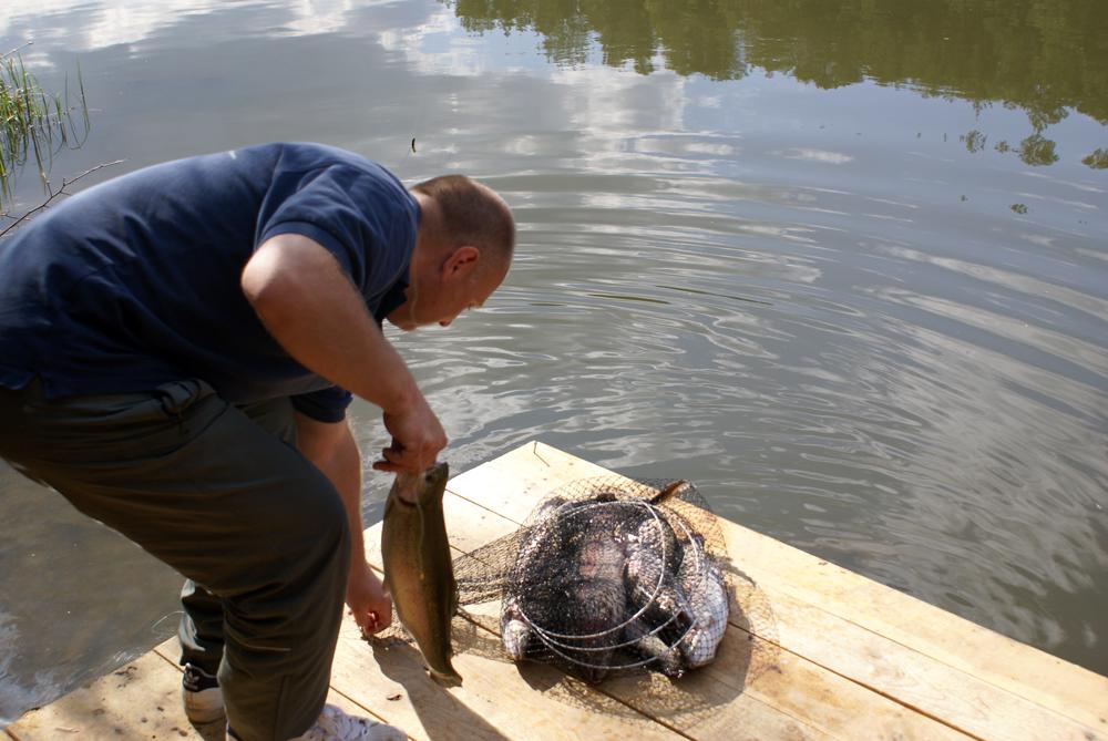Рыбалка в калужской области платная